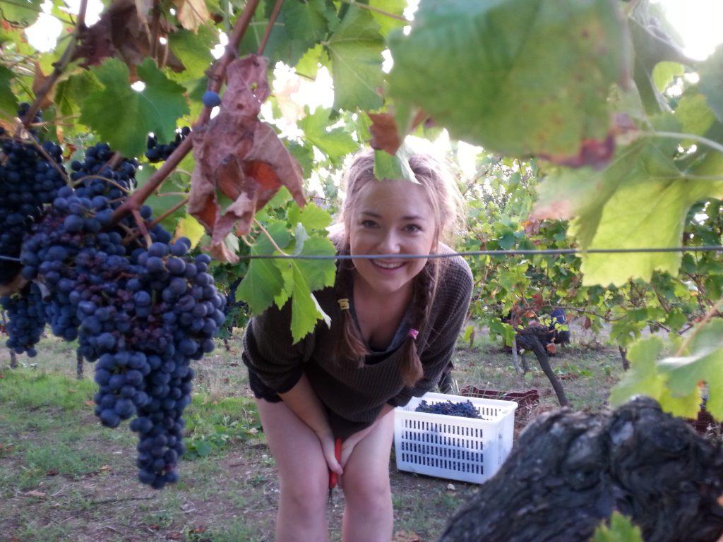 Ellie in the vines